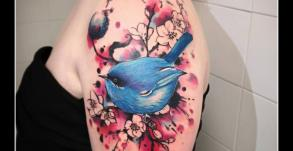 graphicaderme-avignon-julien-dirtycool-aquarelle-oiseau-avignon-tatouage