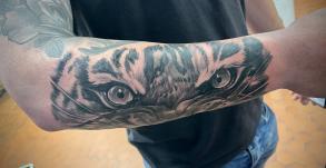 stephane-chaudesaigues-tatouage-oeil-tigre