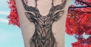 tatoueuse-tatoueur-vaison-la-romaine-vaucluse-joe-wild-graphicaderme-tatouage-cerf