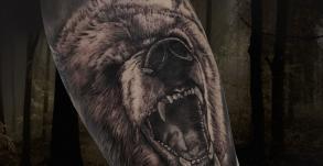 tatoueuse-tatoueur-vaison-la-romaine-vaucluse-joe-wild-graphicaderme-tatouage-ours