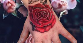 tatoueuse-tatoueur-vaison-la-romaine-vaucluse-joe-wild-graphicaderme-tatouage-rose