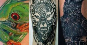 tattoo_animal_studio_tatouage_vaison_la_romaine_tatoueur_vaison_graphicaderme