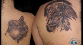 Tatouage Tattoo Animaux Noir et Gris Avignon