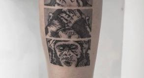 joe-wild-graphicaderme-tatouage-vignette-miniature-tattoo-bollene-nyons-carpentras-valreas-malaucene