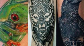 tattoo_animal_studio_tatouage_vaison_la_romaine_tatoueur_vaison_graphicaderme