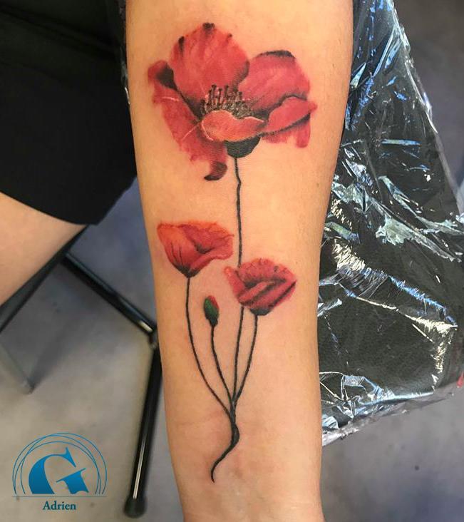 graphicaderme-adrien-vaucluse-republique-avignon-tatouage-tatoueur-fleur-coquelicot
