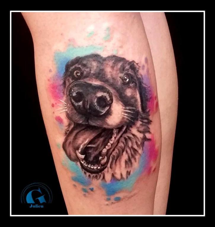 graphicaderme-avignon-vaucluse-paca-juliendirtycool-aquarelle-tatouageaquarelle-tatouage-tattoo-tatouagecouleurs-chien-tatouagechien