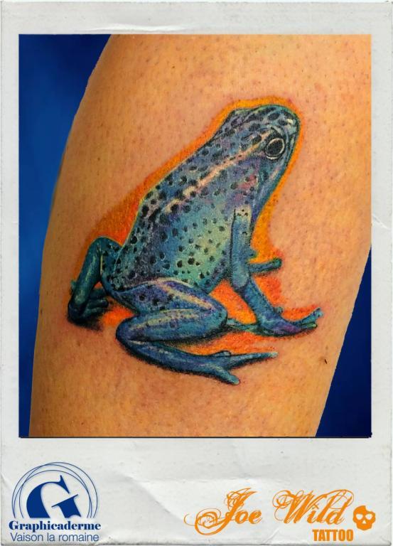 joe-wild-tatoueur-vaison-la-romaine-malaucene-nyons-bollene-tatouage-grenouille