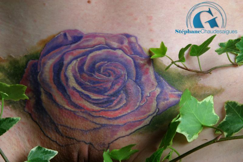 une rose pour un tatouage intime graphicaderme. Black Bedroom Furniture Sets. Home Design Ideas