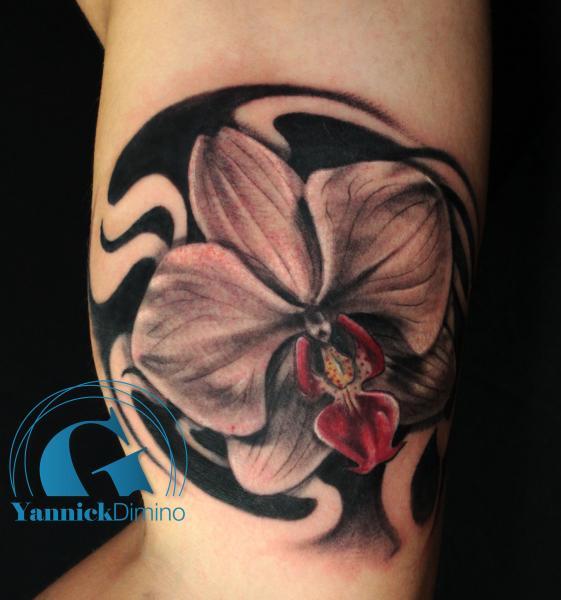 Les fleurs rose tulipe orchyd e etc par yannick dimino graphicaderme - Tatouage fleur noir ...