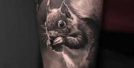 meilleure-tatoueuse-joe-wild-noa-yanni-tattoo-ecureuil