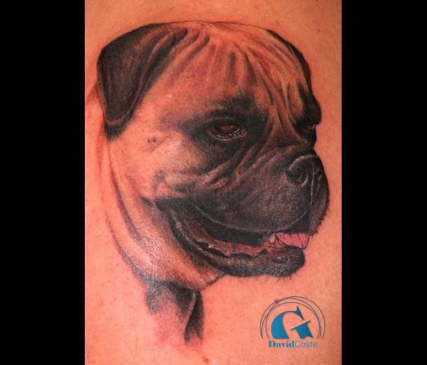 Tatouage chien graphicaderme - Tatouage geometrique animaux ...
