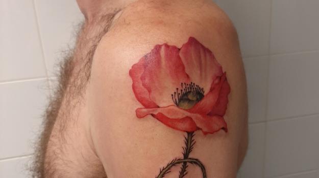 graphicaderme-avignon-justine-tattoo-coquelicot-tatouagecouleurs-vaucluse