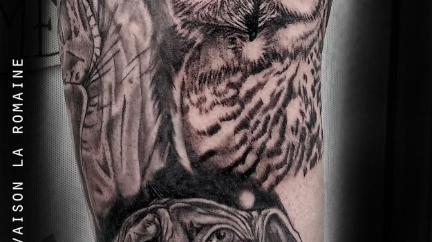 tattoo-tatouage-Harry-potter-chouette-hibou-piercing-art-vaison-vaucluse-dessin-peinture-bollène-nyons-buislesbaronnies-tulette-malaucène-cavaillon-robion-coustellet-drôme-ardèche-tatouagenoiretgris