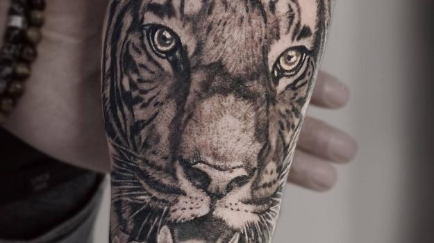 tattoo_tatouage_piercing_art_vaison_la_romaine_vaucluse_tigre_félin_peinture_bollène_nyons_buis_les_baronnies_tulette_malaucène_cavaillon_robion_coustellet_drôme_ardèche_noir_et_gris_réalisme_bras