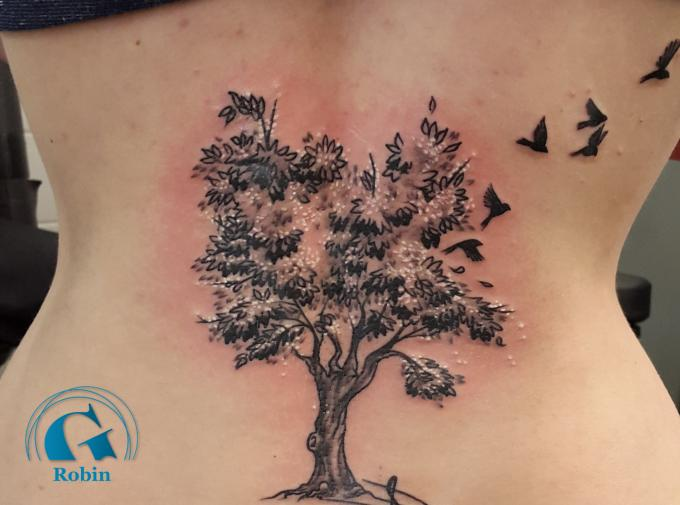 Tatouage arbre graphicaderme - Attrape reve arbre ...