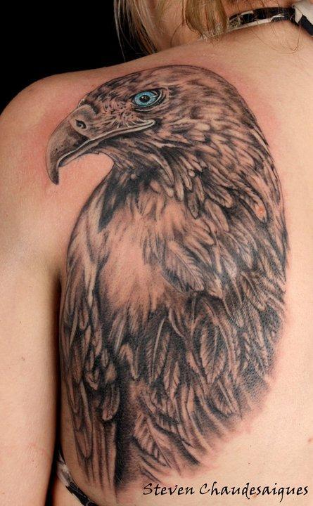 Tatouage sur une omoplate d 39 un aigle royal par steven chaudesaigues graphicaderme - Dessin d aigle royal ...